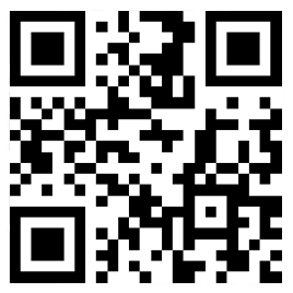 Scan the official website of mobile phone